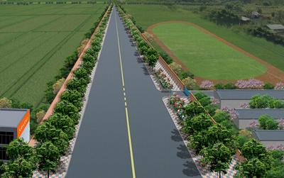 道路绿化工程设计